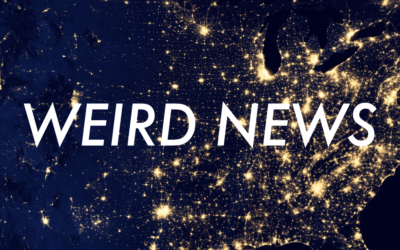 # 102 – Weird News: Driftwood? & Others
