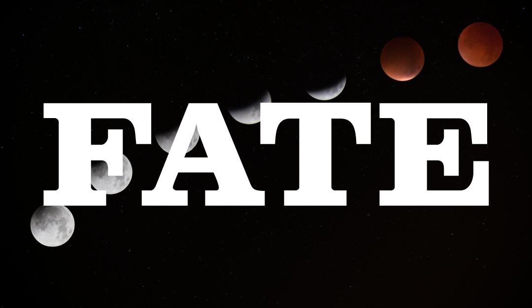 #14 – Fate: Tarot